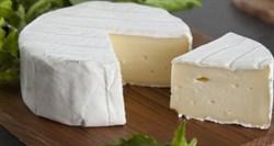 Сыр Бри мягкий с белой плесенью. Вес: 125 гр    - фото 4585